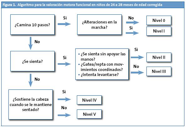 Figura 1. Algoritmo para la valoración motora funcional en niños de 24 a 28 meses de edad corregida