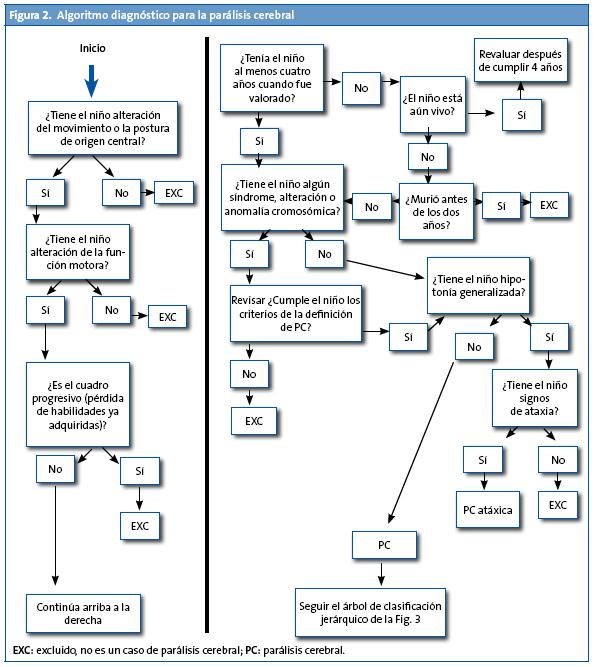 Figura 2. Algoritmo diagnóstico para la parálisis cerebral