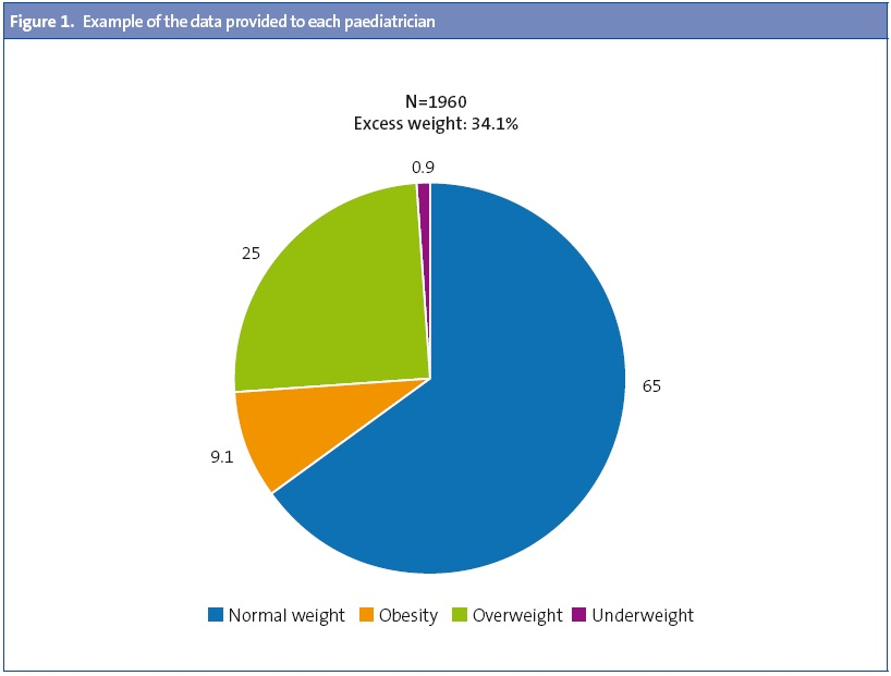 Figure 1. Example of the data provided to each paediatrician